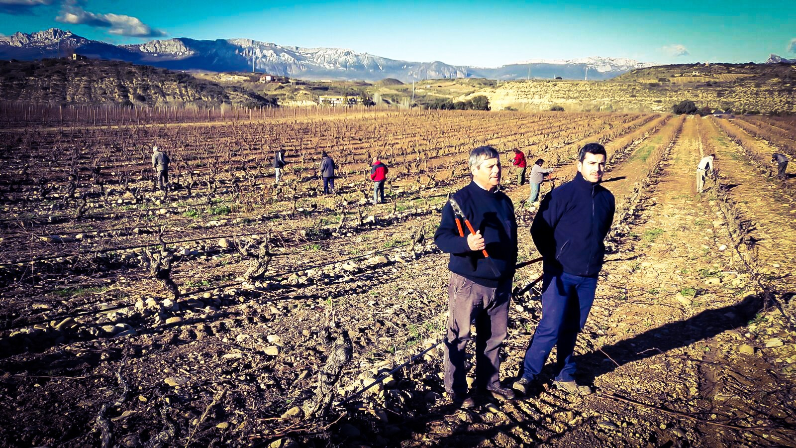 LAN people: Jose and Pedro, two generations devoted to the vineyard